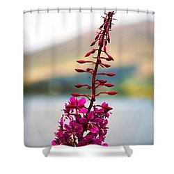Reaching To The Sky Shower Curtain
