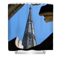 Shower Curtain featuring the photograph Reaching Towards Heaven by Wendy Wilton