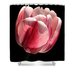Ready Shower Curtain by Doug Norkum