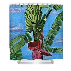 Ready For Harvest Shower Curtain by Laura Forde