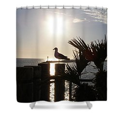 Ready For Sunset Shower Curtain by Bev Conover