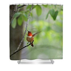 Ready For Take-off Shower Curtain
