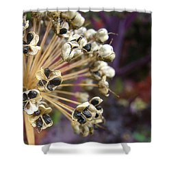 Shower Curtain featuring the photograph Ready To Disperse by Cheryl Hoyle