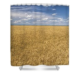 Shower Curtain featuring the photograph Ready To Harvest by Rob Graham