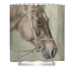 Ready To Ride Shower Curtain by Linda Blair