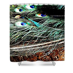 Shower Curtain featuring the photograph Realpeack by Vanessa Palomino