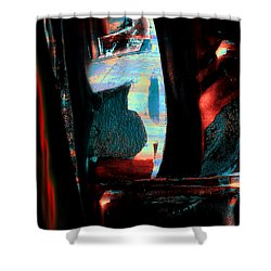 Shower Curtain featuring the painting Reasons- Ewf Series 5 by Yul Olaivar