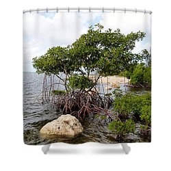 Shower Curtain featuring the photograph Reclamation 9 by Amar Sheow