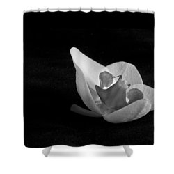 Reclining Orchid Shower Curtain