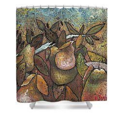 'recognized By It's Fruit' Shower Curtain