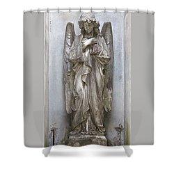 Recoleta Angel Shower Curtain