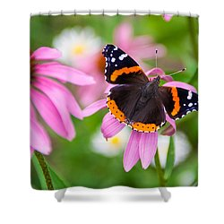 Shower Curtain featuring the photograph Red Admiral Butterfly by Patti Deters