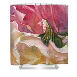Red-amber-green Shower Curtain by Mohamed Hirji