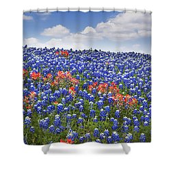 Red Among The Blue Shower Curtain by David and Carol Kelly