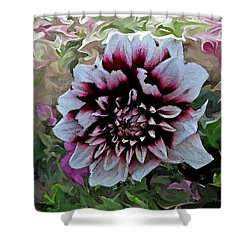 Red And White Dahlia  Shower Curtain