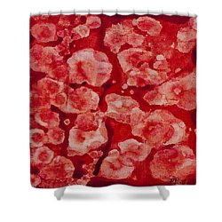 Red And White Shower Curtain by Darice Machel McGuire