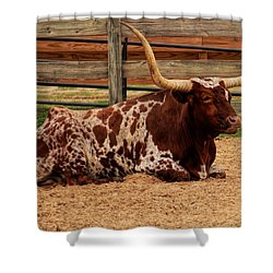 Red And White Texas Longhorn Shower Curtain