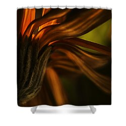 Shower Curtain featuring the photograph Red Autumn Blossom Detail by Peter v Quenter
