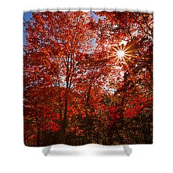 Shower Curtain featuring the photograph Red Autumn Leaves by Jerry Cowart