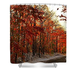 Red Autumn Road In Snow Shower Curtain by Terri Gostola