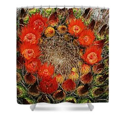 Red Barell Cactus Flowers Shower Curtain by Tom Janca
