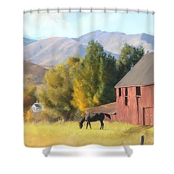 Red Barn Shower Curtain by Rob Corsetti