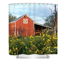 Red Barn With Wild Sunflowers Shower Curtain by Susan Williams