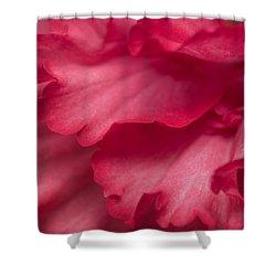 Red Begonia Petals Shower Curtain by Priya Ghose