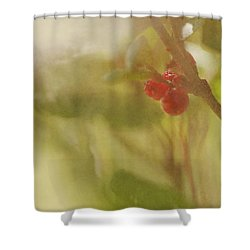 Red Berries Of The Bog Cranberry Shower Curtain by Roberta Murray