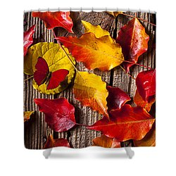 Red Butterfly In Autumn Leaves Shower Curtain by Garry Gay