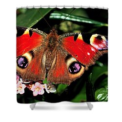 Red Butterfly In The Garden Shower Curtain