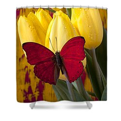 Red Butterfly Resting On Tulips Shower Curtain by Garry Gay