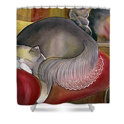 Sleeping Persian Cat On Red Sofa Shower Curtain