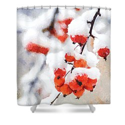 Red Crabapples In The Winter Snow - A Digital Painting By D Perry Lawrence Shower Curtain