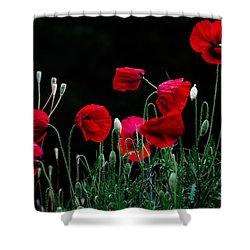 Red Dance Shower Curtain by Edgar Laureano