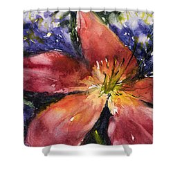 Red Daylily Shower Curtain