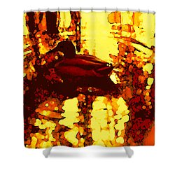 Red Duck Lake 6 Shower Curtain by Amy Vangsgard