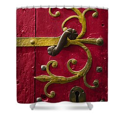 Red Entrance Shower Curtain