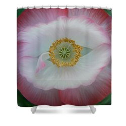 Shower Curtain featuring the photograph Red Eye Poppy by Barbara St Jean