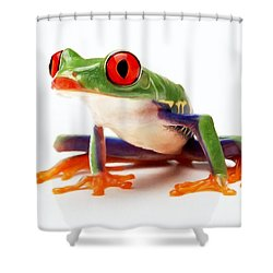 Red-eye Tree Frog 1 Shower Curtain by Lanjee Chee