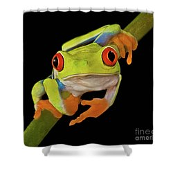 Red Eye Tree Frog Shower Curtain by Susan Candelario