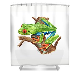 Red-eyed Treefrog Shower Curtain by Cindy Hitchcock