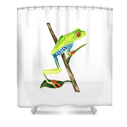 Red-eyed Treefrog From La Selva Shower Curtain by Cindy Hitchcock
