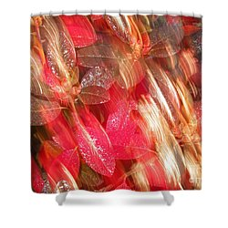 Red Fall Leaves 10 Shower Curtain