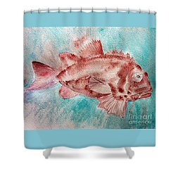 Red Fish Shower Curtain by Jasna Dragun