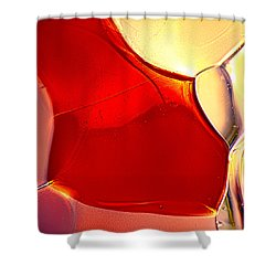 Red Fish Shower Curtain by Omaste Witkowski
