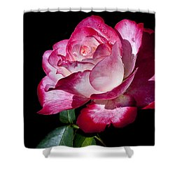 Shower Curtain featuring the photograph Red Flame by Doug Norkum