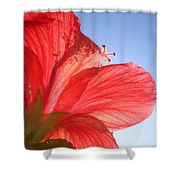 Red Flower In The Sun By Jan Marvin Studios Shower Curtain