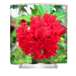 Red Flower Shower Curtain by Sergey Lukashin