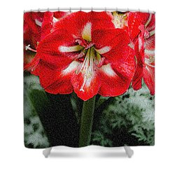 Red Flower With Starburst Shower Curtain by Crystal Wightman